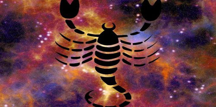 Escorpio en casa 5